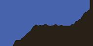 vdmo_logo
